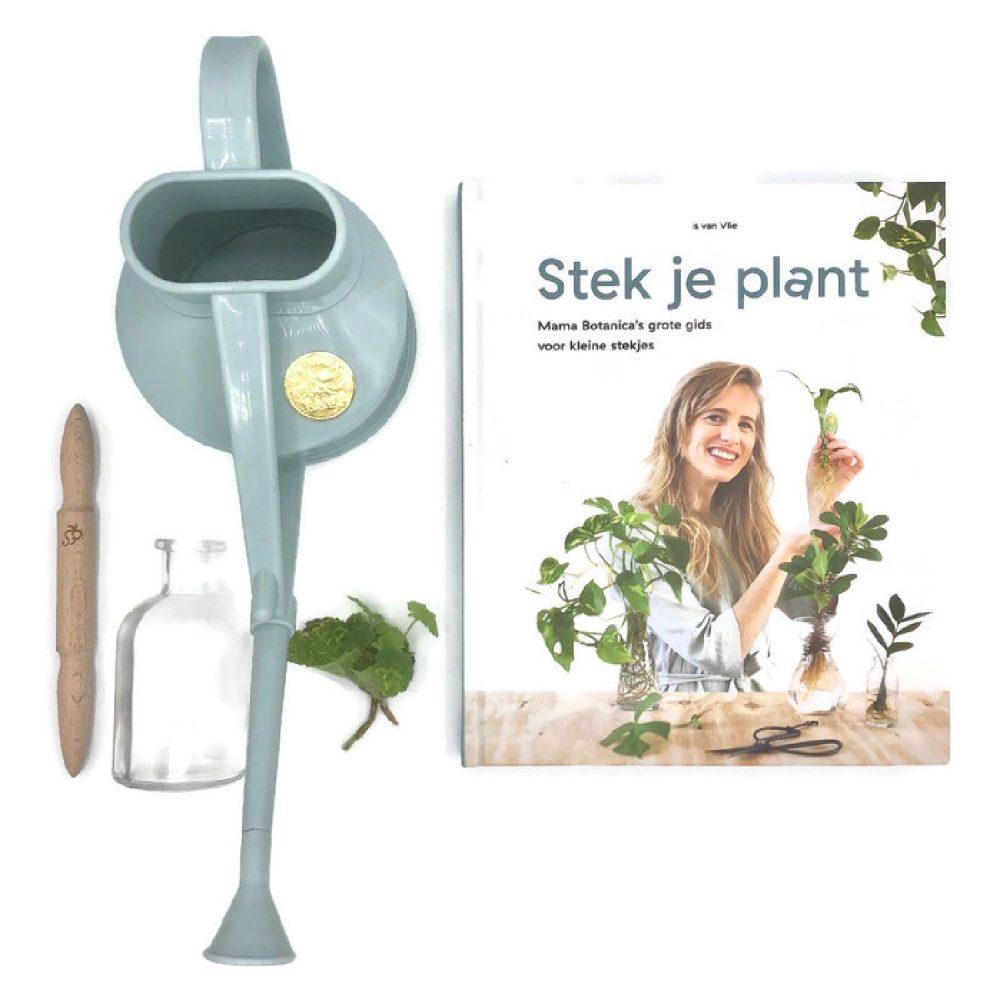 stek je plant pakket